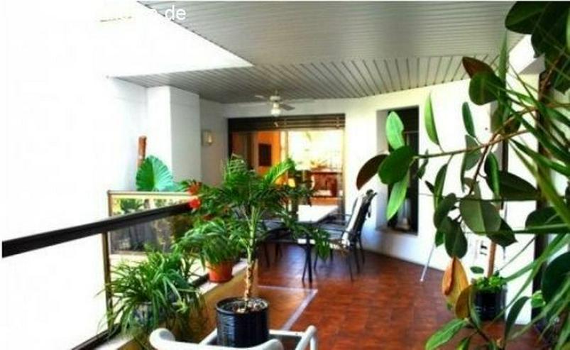 Bild 5: : herrliche Wohnung mit Blick auf Pool und Garten in hervorragender Lage in Palma