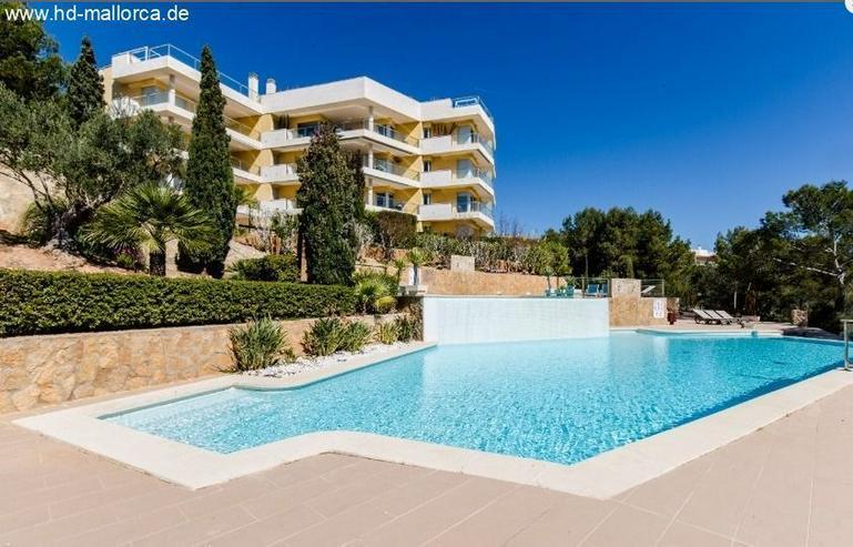 Bild 1: : Duplex Ferienwohnung mit Top-Ausstattung in der luxuriösen Umgebung von Sol de Mallorca