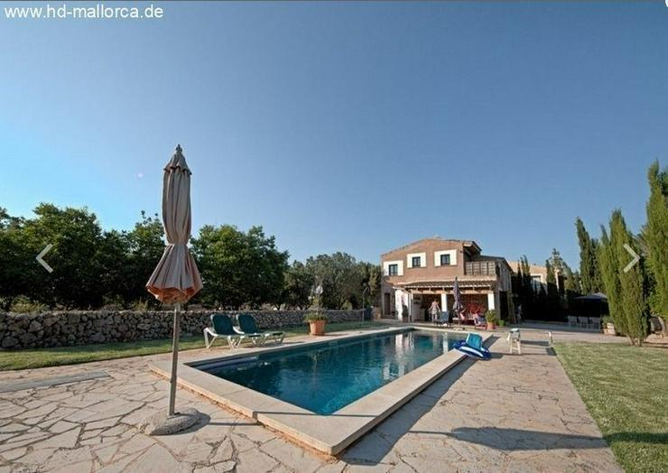 Bild 2: : Rustikale (frisch renovierte) Finca mit Pool in Son Negre - Felanitx