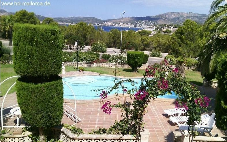 Bild 5: : große Mediterrane Villa in Santa Ponsa in nur 500m vom Strand entfernt