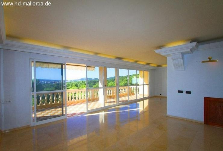 Bild 3: : Kleingeldsanierung ein muss! Tolle Villa mit Meerblick in Costa d?en Blanes
