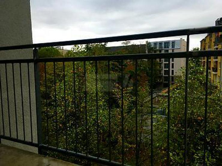 BLICK INS GRÜNE IN GEFRAGTER LAGE & *BEZUGSFREI* - Wohnung kaufen - Bild 1