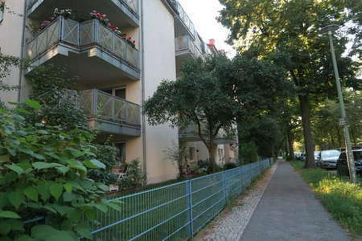 Bild 2: Wilhelmsruh - (vermietete) Eigentumswohnung in beliebter Wohnlage