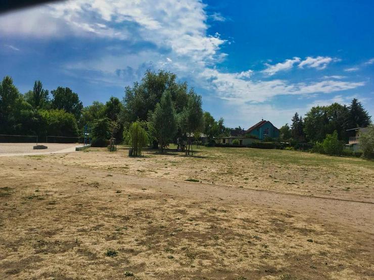 tolles Grundstück - nur 5 min von Beetzsee enfernt