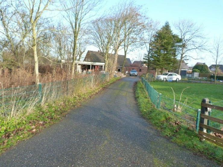 Bild 3: Doppelhaus mit großem Grundstück ca. 4800 m²