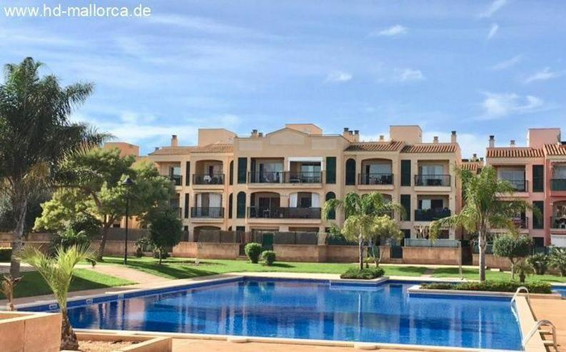 : für kleines Geld eine schicke Wohnung in Sa Torre!