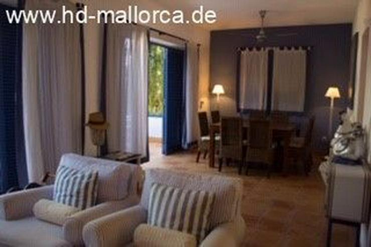 Bild 3: : Die blaue Villa zwischen dem Meer und den Bergen!