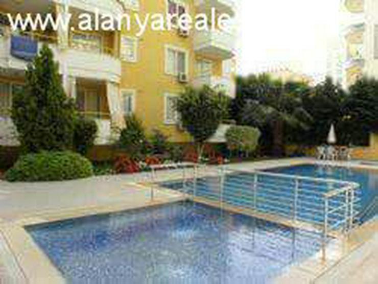 Bild 5: Pollo Residence Günstige 2 Zimmer Wohnung voll möbliert mit Pool und Hallenbad