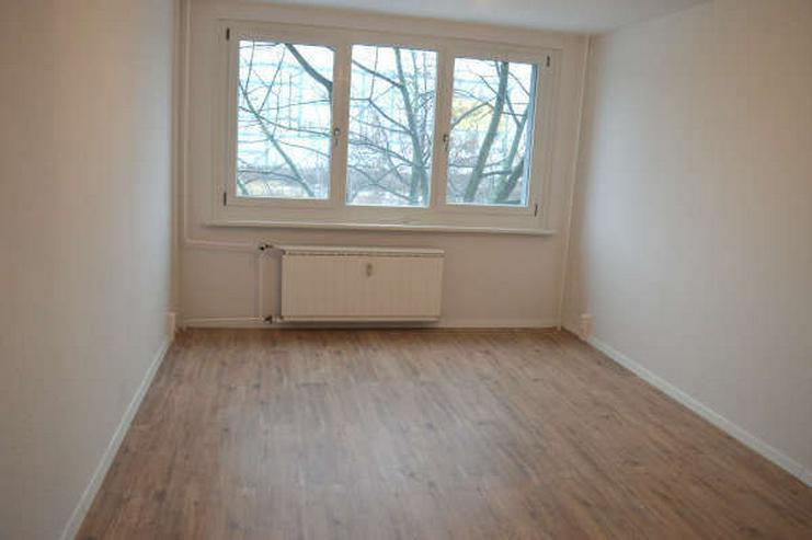 Bild 2: Modernisierte 1-Zimmerwohnung