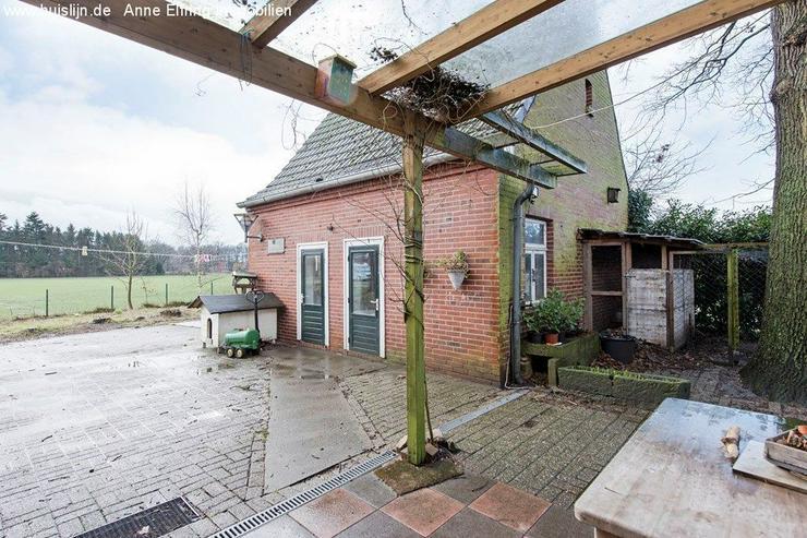 Bild 5: Einfamilienhaus in Randlage von Schüttorf mit vielen Möglichkeiten