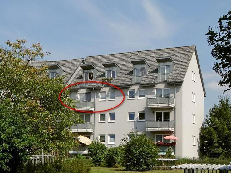 (12537_25) MGN: bezugsfertige helle 2-Raum-Wohnung mit Südbalkon zum Innenhof, Kabel-TV u...