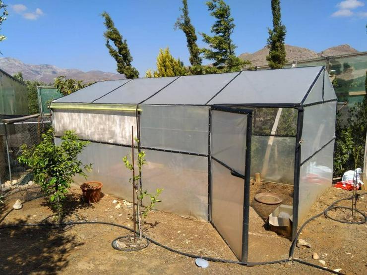 Bild 5: Steinhaus in Tsoutsouros Süd Kreta 180qm Wohnfläche 3650qm Grundstück