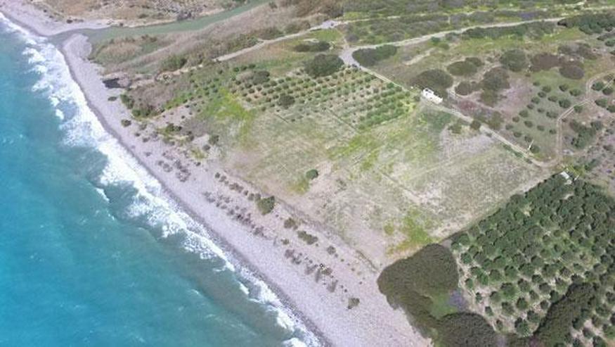Bild 3: Fantastisches Strandgrundstück in Dermatos, Südkreta 24.000m² mit direktem Zugang zum S...