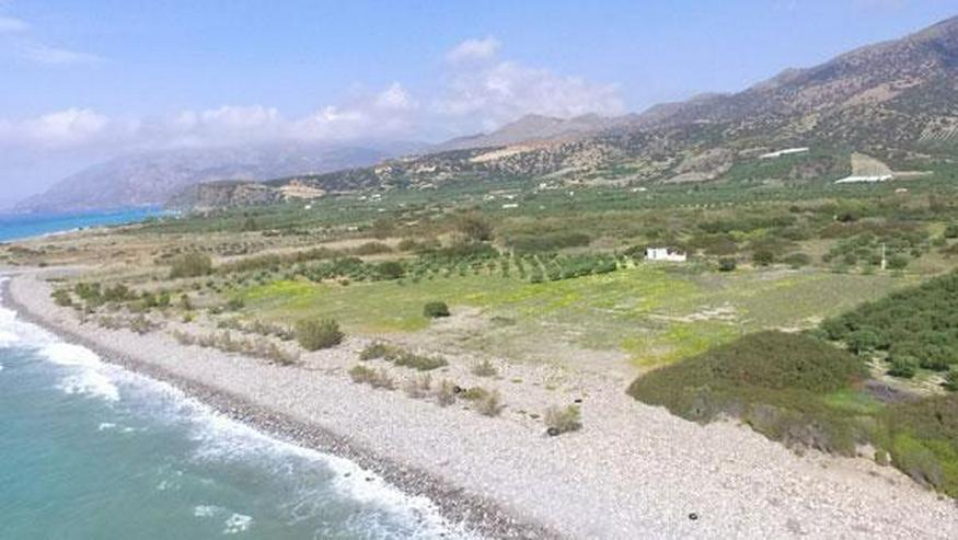 Bild 2: Fantastisches Strandgrundstück in Dermatos, Südkreta 24.000m² mit direktem Zugang zum S...