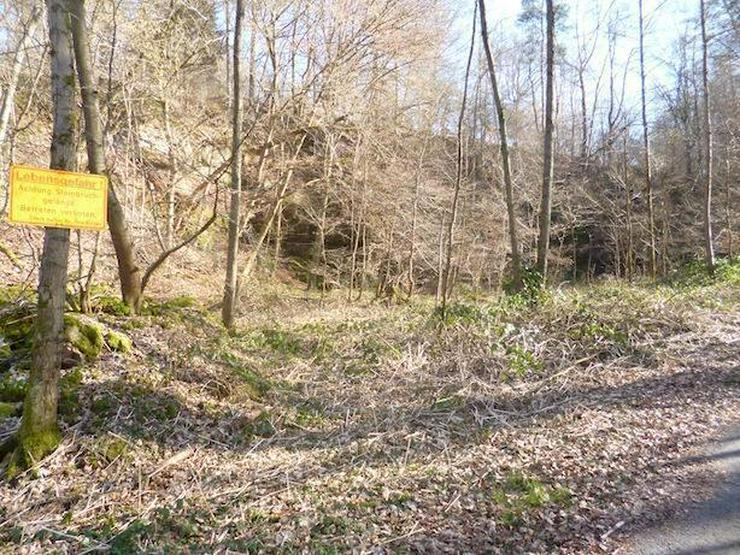Bild 3: Steinbruch mit Wald u. Wiesen- ca. 6.512 m²- im unteren Neckartal