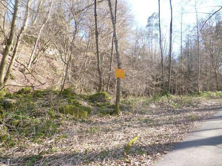 Bild 2: Steinbruch mit Wald u. Wiesen- ca. 6.512 m²- im unteren Neckartal