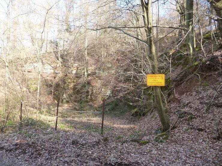 Steinbruch mit Wald u. Wiesen- ca. 6.512 m²- im unteren Neckartal