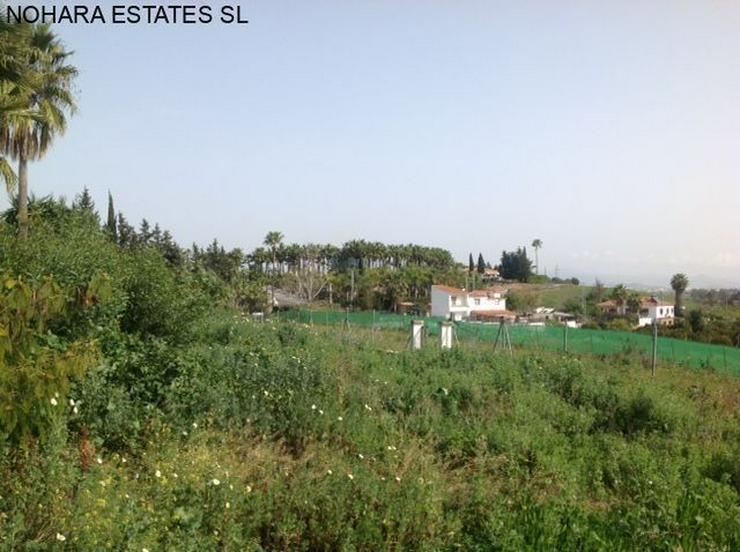Bild 4: Plot in Alhaurin de la Torre