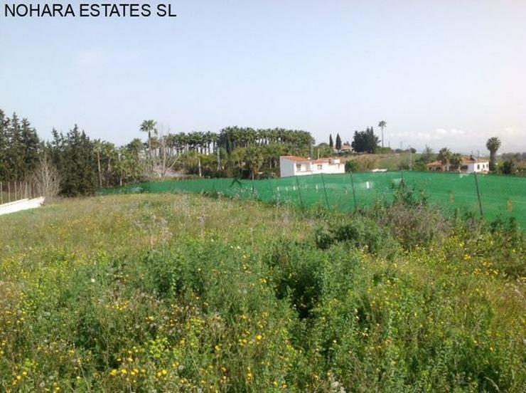 Bild 2: Plot in Alhaurin de la Torre