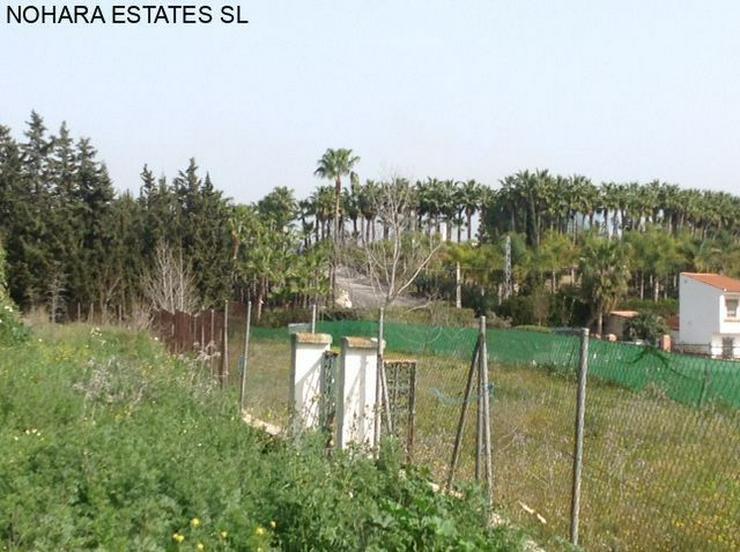 Bild 5: Plot in Alhaurin de la Torre