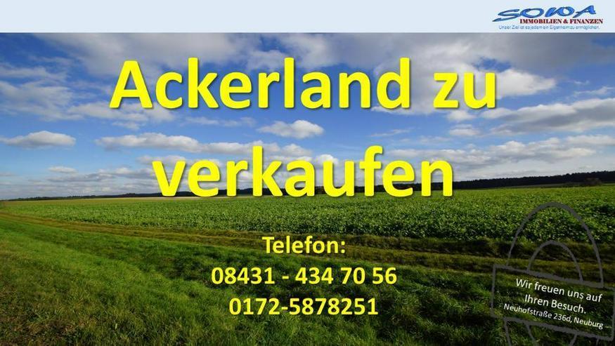 Acklerland in Beilngries - Ihre Immobilien Experten: SOWA Immobilien und Finanzen
