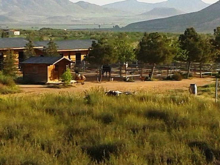 Bild 2: *Schnäppchen* 2 Häuser und Pferderanch auf 138000 qm Grundstück günstig zu verkaufen!