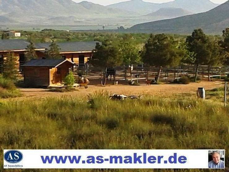 *Sonderpreis* Germany Pferderanch mit 2 Häuser auf 138000 qm Grundstück günstig zu verk...