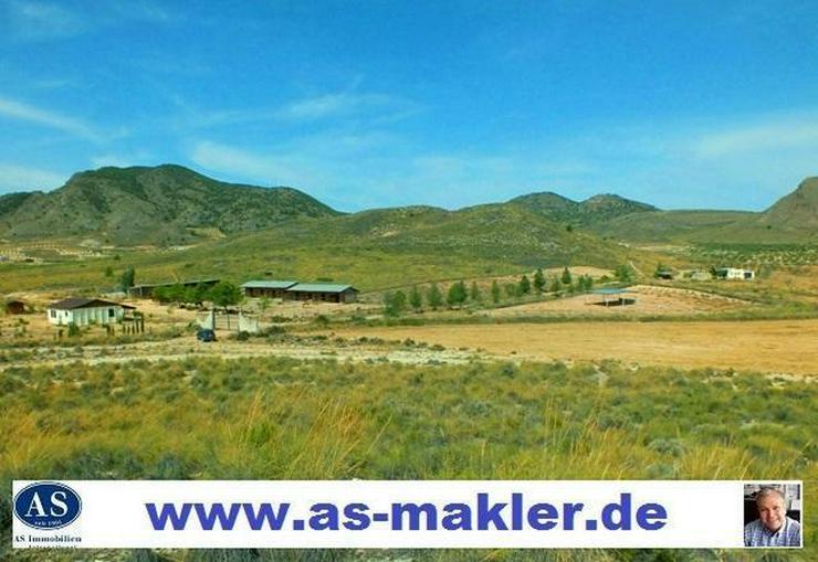 *Reduziert* 138000 qm Grundstück mit Pferderanch und 2 Häuser auf günstig zu verkaufen!