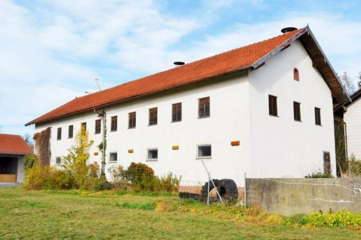 Bild 2: 200 m² Hallenfläche bei 84335 Mitterskirchen zu vermieten