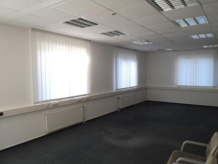 Bild 5: Hier macht das Arbeiten Freude! Helle Büroräume über 2 Etagen