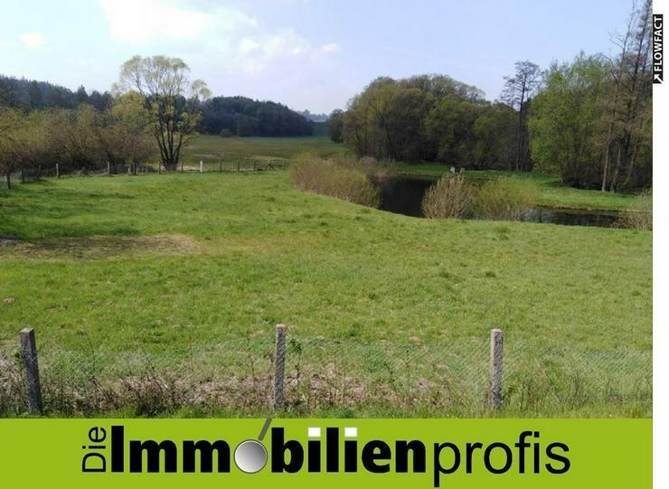 Freizeitgrundstück mit Teich und kleinem Häuschen nahe Untreusee