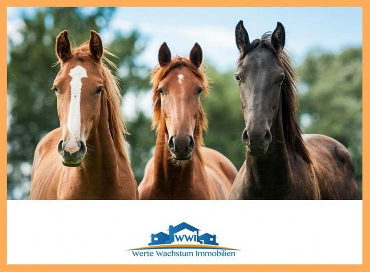 Unterstellmöglichkeit für 3 Pferde mit 3400 m² Weide bei 84335 Mitterskirchen