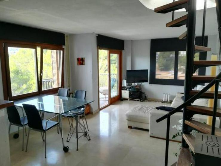 LANGZEITMIETE: Apartment mit Dachterrasse beim Yachthafen von Santa Ponsa