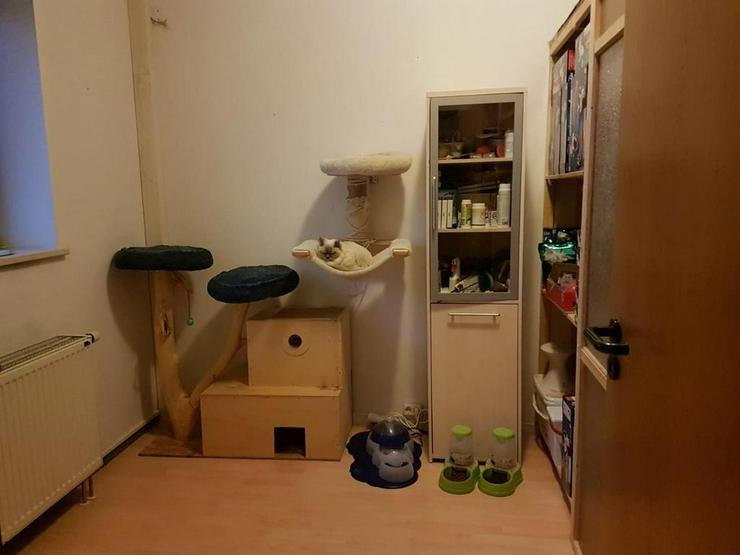 Bild 5: Gepflegte 5-Zimmer-Wohnung in zentraler Wohnlage - bis 25.07.2019!