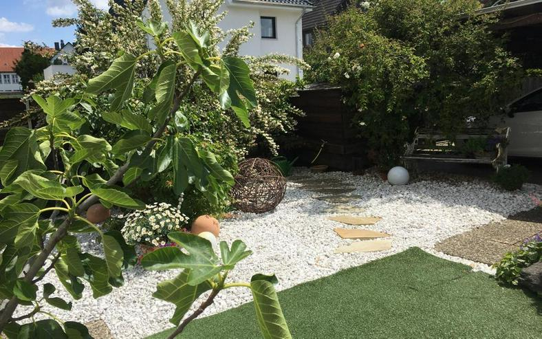 Ohne Käuferprovision: modernisiertes Haus mit tollem Grundstück in ruhiger Lage von Brau...
