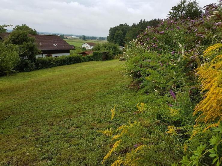 Bild 5: Ruhig gelegenes Baugrundstück im grünen ohne Bauzwang!