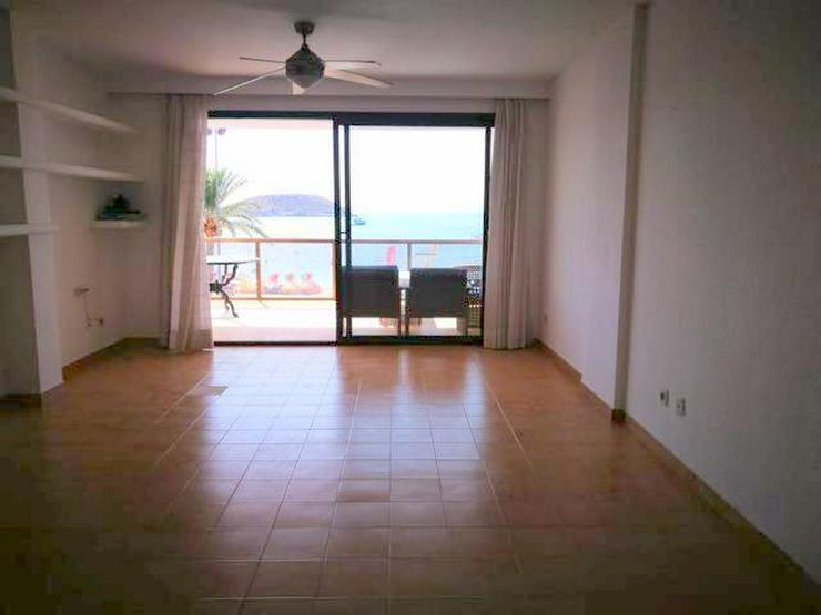 Bild 3: Meerblick-Apartment in Magaluf mit 3 Schlafzimmern