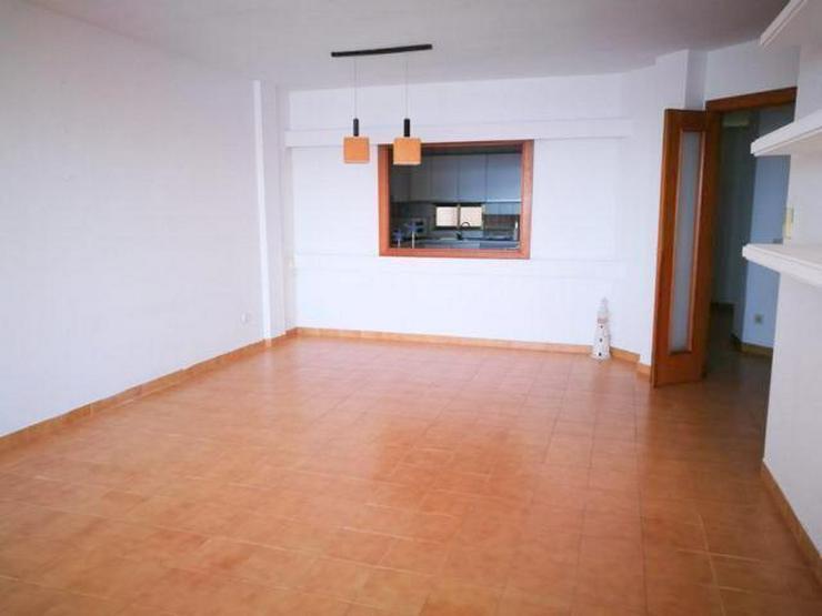 Bild 4: Meerblick-Apartment in Magaluf mit 3 Schlafzimmern