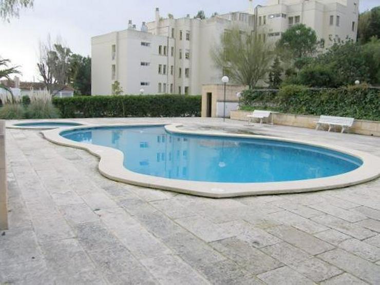 Bild 2: Möblierte Wohnung mit 3 Schlafzimmern in Cas Catala
