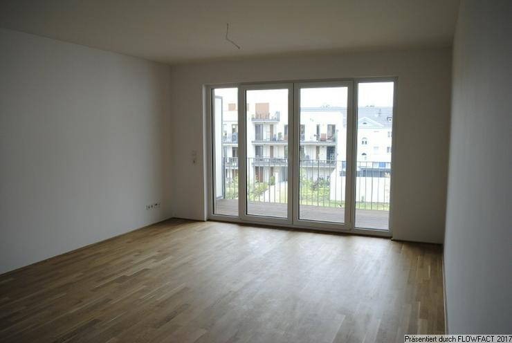 Bezugsfreie - Moderne 3-Zimmer-Wohnung in Frankfurt Höchst