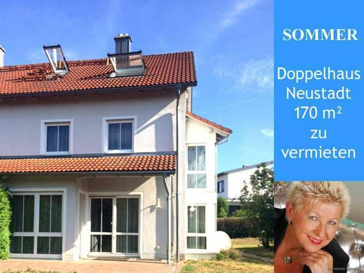 Neustadt WN - DHH Architektenhaus zu vermieten