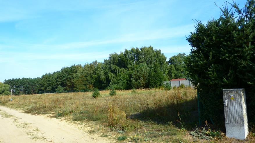 Ein Baugrundstück zwischen Wäldern und Seen in Polen