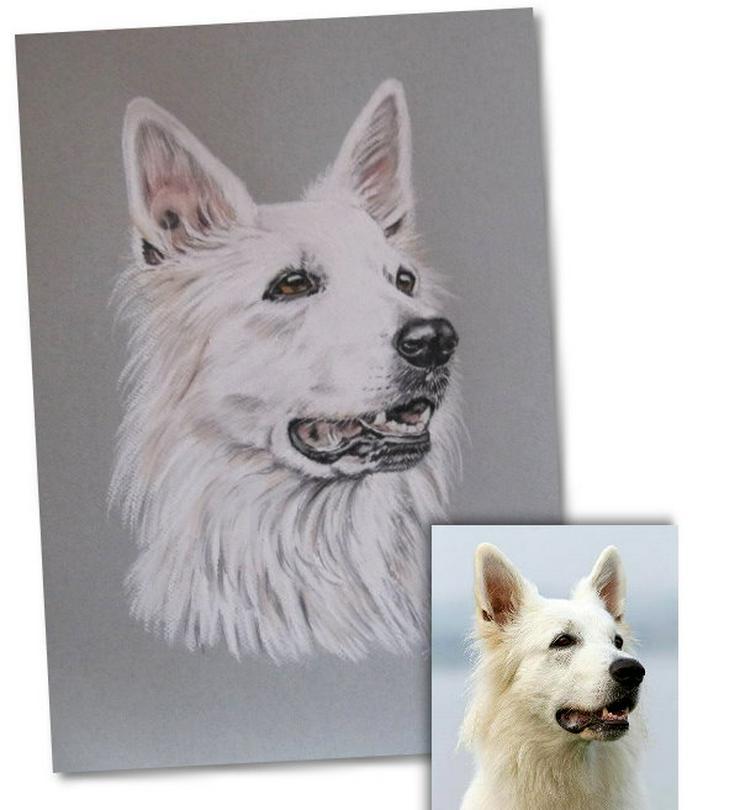 Tiermalerei nach Foto, Tierportraits, Tierzeichnungen