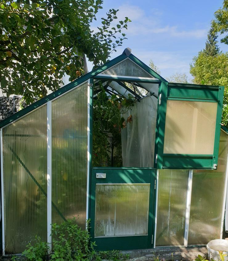Gewächshaus - Kleingärten - Bild 1