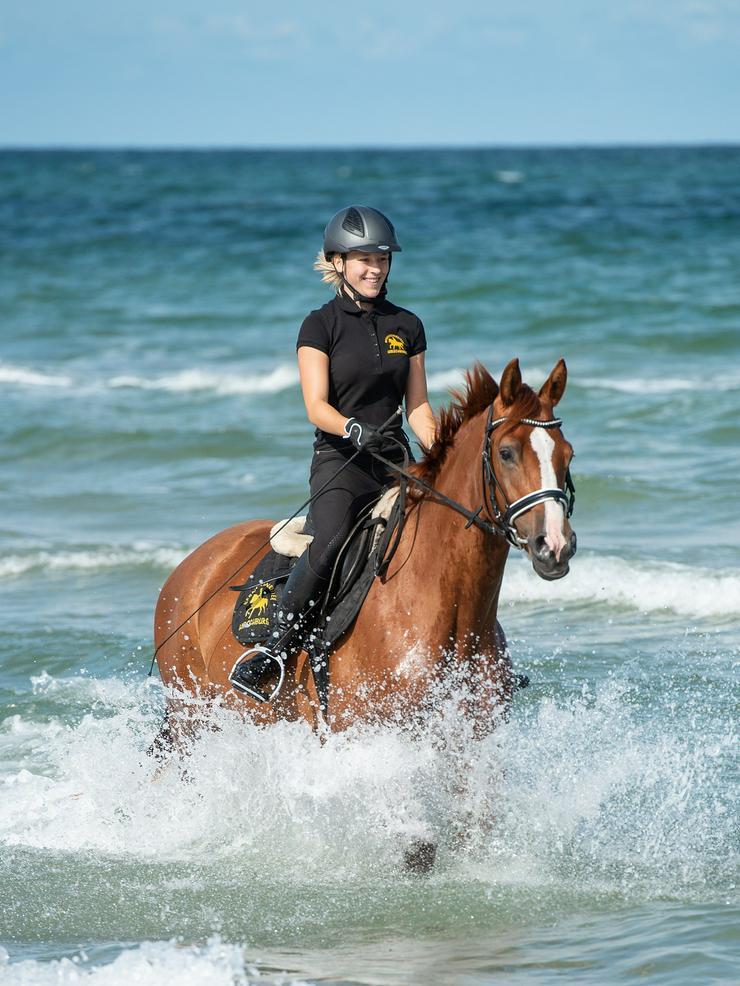 Bild 3: Verkäufer (m/w) mit Pferdeerfahrung
