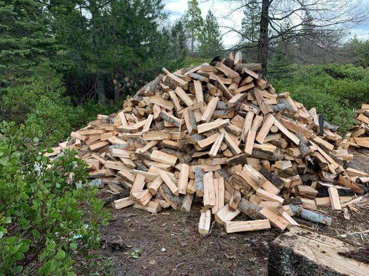 Brennholz getrockneter Qualität / Brennholz Eiche / Buche