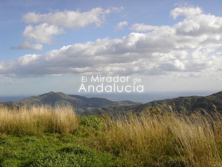 """Schöne, hohe, strategische und ländliche Lage """"El Mirador De Andalucia"""""""