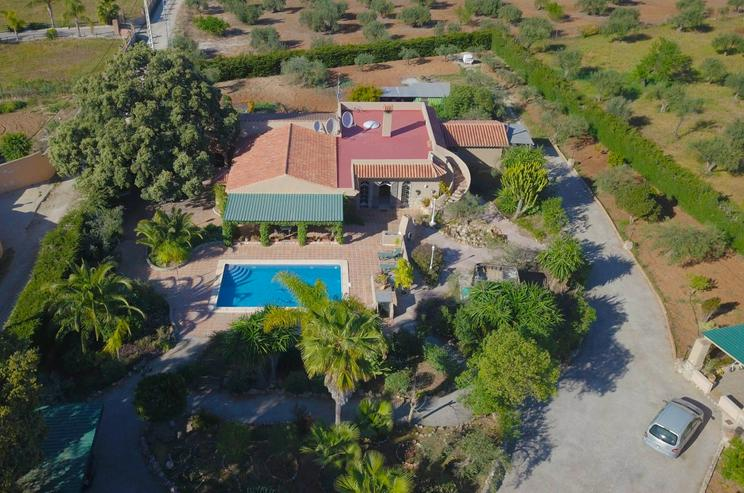 Bild 18: Finca 4600 qm Grundstück mit 2 Häuser und 2 Apartments zu verkaufen