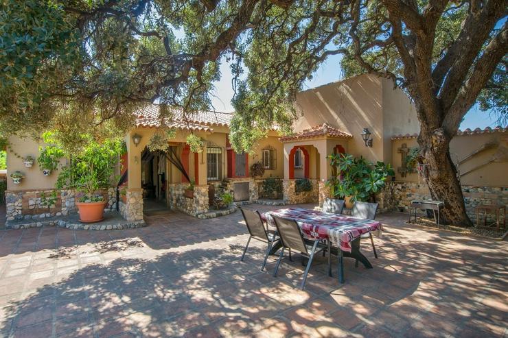Bild 6: Finca 4600 qm Grundstück mit 2 Häuser und 2 Apartments zu verkaufen
