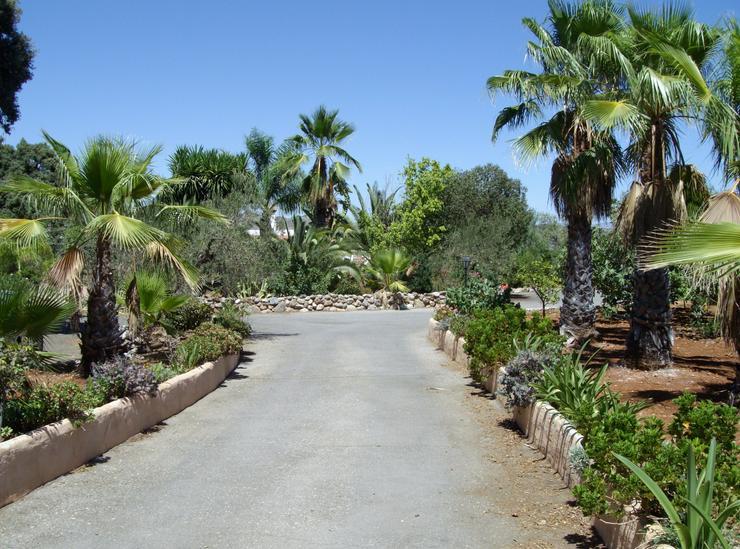 Bild 4: Finca 4600 qm Grundstück mit 2 Häuser und 2 Apartments zu verkaufen